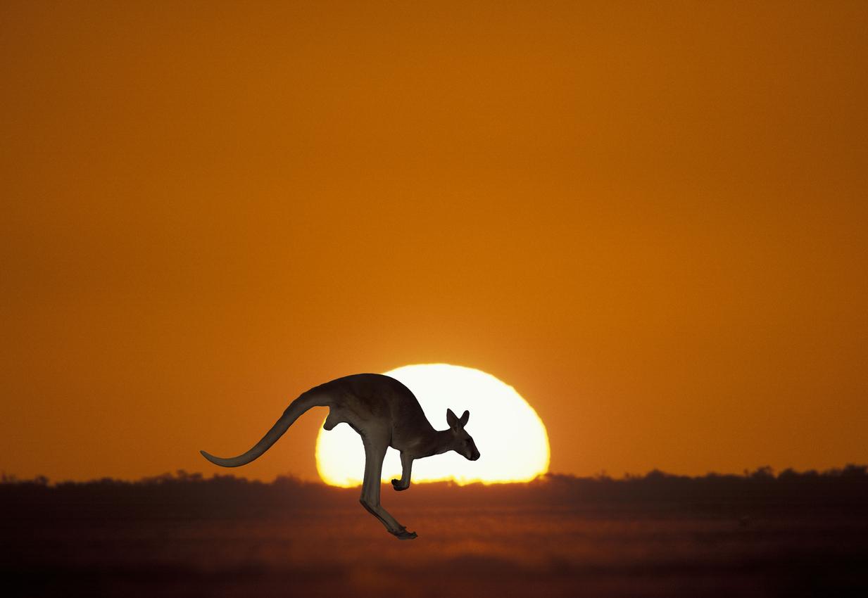 travell blogger Australia